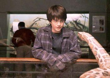 Descubrieron un nuevo tipo de serpiente y le pusieron el nombre de un personaje de Harry Potter